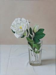 """White Rose, Oil on Panel 12""""x 16"""""""